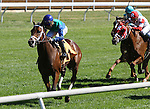 October 08, 2014:Circus Performer and jockey Joel Rosario win the 3rd race, Maiden 2 year olds, for owner Green Hills Farm and trainer Todd Pletcher.  Candice Chavez/ESW/CSM