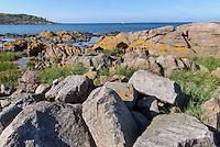 Felsküste am Hafen von Sandvig auf der Insel Bornholm, Dänemark, Europa<br /> rocks at port of Sandvig, Isle of Bornholm, Denmark