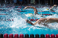 STANFORD, CA - February 17, 2018: Cole Cogswell at Avery Aquatic Center. The Stanford Cardinal defeated the California Golden Bears 151-149 on Senior Day.