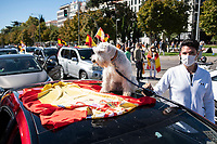 MADRID, SPAIN - OCTOBER 12: A dog over a car during a protest against the Government summoned by VOX, Spanish far-right party and third biggest party in the Parliament, on 12 October 2020, in Madrid, Spain. The demonstration coincides with the National Day in Spain after the Government declared state of alarm in the Madrid region on previous Friday to slow down the high Covid-19 cases in some municipalities of this region. (Photo by Sergio Belena/VIEWpress via Getty Images).