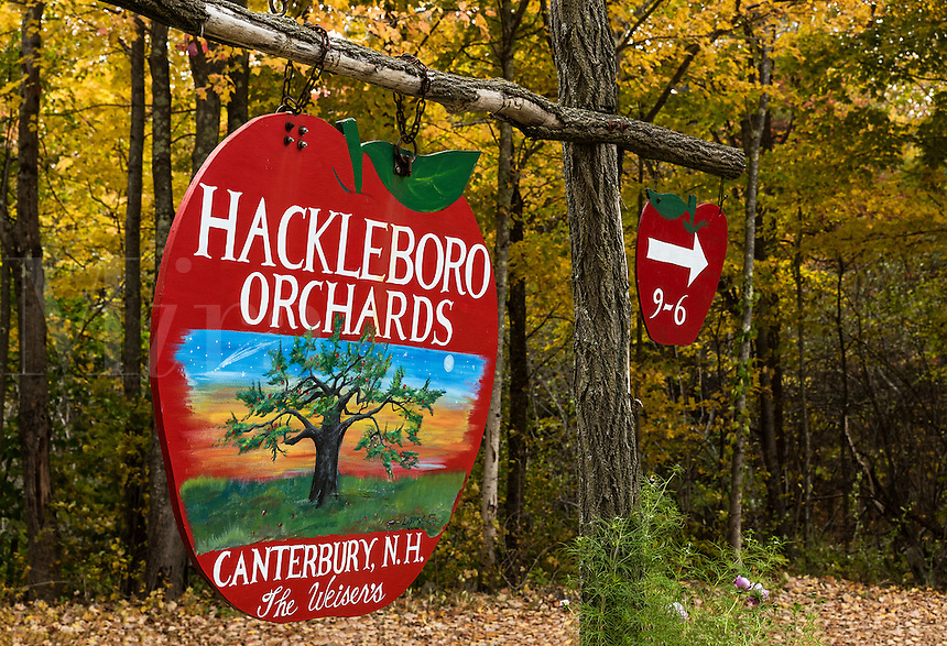 Rustic apple orchard sign, Canterbury, New Hampshire, USA