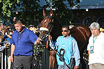 June 7, 2014: Belmont Stakes contender Wicked Strong enters the paddock before the 146th running of the Grade I Belmont Stakes at Belmont Park , Elmont, NY.  ©Joan Fairman Kanes/ESW/CSM