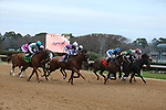 January 23, 2021: The start of the  Pippin Stakes at Oaklawn Racing Casino Resort in Hot Springs, Arkansas. ©Justin Manning/Eclipse Sportswire/CSM