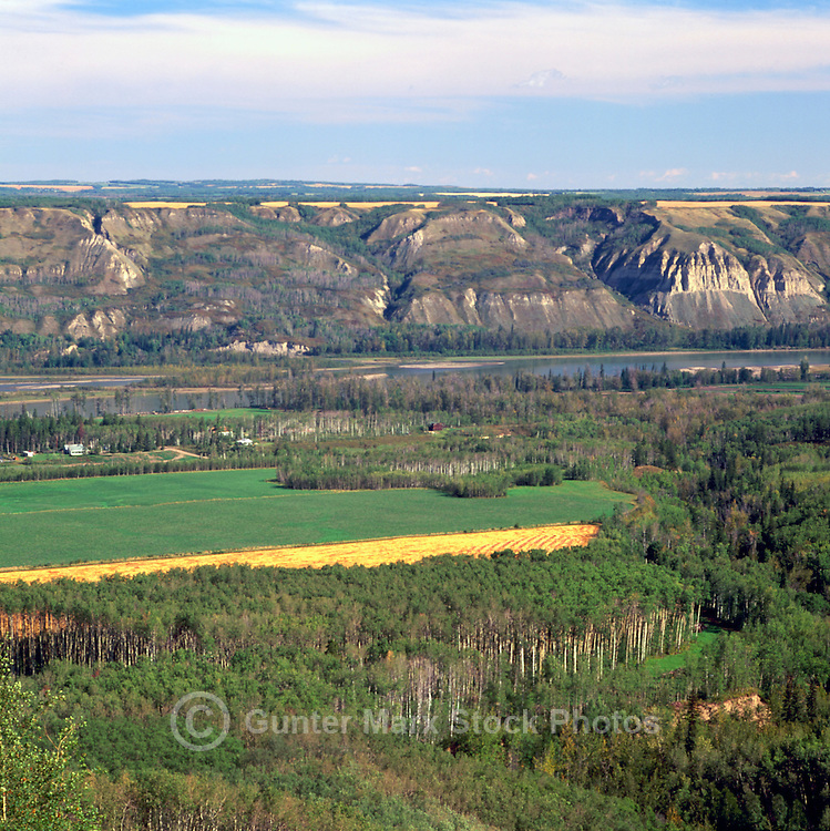 Peace River Valley and Grain Fields at Harvest Time, near Taylor, Northern BC, British Columbia, Canada