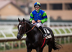DEL MAR, CA - JULY 27: Take the One O One with Joe Talamo wins the Real good Deal Stakes at Del Mar on July 27, 2018 in Del Mar, California.(Photo by Alex Evers/Eclipse Sportswire)