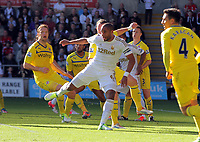 Saturday, 06 October 2012<br /> Pictured: of Swansea of Reading<br /> Re: Barclays Premier League, Swansea City FC v Reading at the Liberty Stadium, south Wales.<br /> Ashley Williams against Noel Hunt
