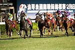 Jockey #7 Nash Rawiller ((2L) riding Who Else But You during the race 7 of during Hong Kong Racing at Happy Valley Race Course on November 08, 2017 in Hong Kong, China. Photo by Marcio Rodrigo Machado / Power Sport Images
