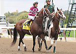 Tapizar, ridden by Corey Nakatani, runs in the Kelso Handicap (GII) at Belmont Park in Elmont, New York on September 29, 2012.  (Bob Mayberger/Eclipse Sportswire)