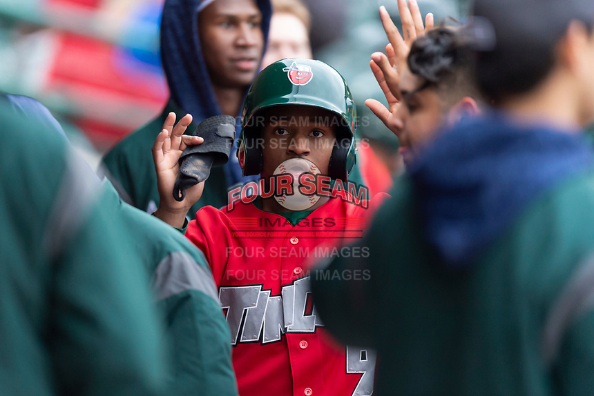Fort Wayne TinCaps Xavier Edwards (9) celebrates with teammates after scoring a run during a Midwest League game against the Fort Wayne TinCaps at Parkview Field on April 30, 2019 in Fort Wayne, Indiana. Kane County defeated Fort Wayne 7-4. (Zachary Lucy/Four Seam Images)