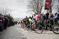 Jelle Wallays (BEL/Lotto-Soudal) on top of the Paterberg<br /> <br /> 72nd Dwars Door Vlaanderen (1.UWT)<br /> 1day race: Roeselare › Waregem BEL (203.4km)