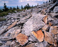 Rock-covered Spruce Knob at Spruce Knob National Recreation Area; Monongahela National Forest, WV