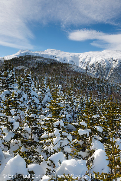 King Ravine covered in snow from a high point off of the Air Line Trail during the winter months in the White Mountains, New Hampshire.