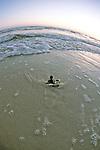 Loggerhead Hatchling Entering To Ocean