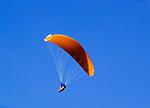 Oesterreich, Salzburger Land, Paraglider mit orangenem Schirm vor blauem Himmel | Austria, Salzburger Land, paraglider with orange parachute against blue sky
