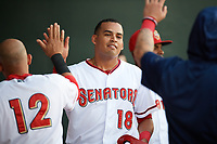 Harrisburg Senators left fielder Mario Lisson (18) high fives teammates in the dugout during a game against the Bowie Baysox on May 16, 2017 at FNB Field in Harrisburg, Pennsylvania.  Bowie defeated Harrisburg 6-4.  (Mike Janes/Four Seam Images)