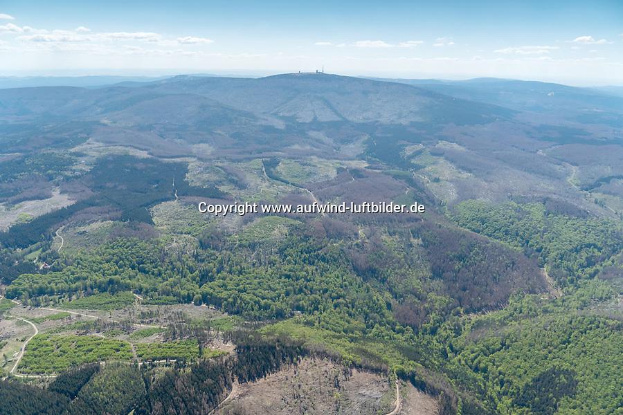 Waldsterben im Harz mit Brocken: DEUTSCHLAND, SACHSEN-ANHALT, BROCKEN, (GERMANY, SAXONY-ANHALT, BROCKEN), 06.05.2020: Waldsterben im Harz mit Brocken