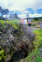 People get a close up view of the Steam Vents along Steaming Bluff. Located along Crater Rim Drive and Kilauea Volcano in Volcanos National Park, Hawaii.