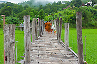 Thailand, Mae Hong Son. Buddhist monks cross Su Tong Pae Bamboo Bridge to collect food offerings in town, from Po Sama Temple.