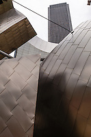 Usa Illinois,Chicago, Pritzker padilion