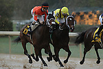 HOT SPRINGS, AR - MARCH 12: Marquee Miss (6) racing neck to neck with Terra Promessa (5) early during the Honeybee Stakes at Oaklawn Park on March 12, 2016 in Hot Springs, Arkansas. (Photo by Justin Manning)