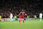 UEFA European Championship at Cardiff City Stadium - Wales v Cyprus :  Gareth celebrates at the final whistle after Wales beat Cyprus 2-1.