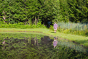 A man walks around Wildlife Pond at Bretzfelder Memorial Park in Bethlehem, New Hampshire