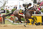 Oxbow and Gary Stevens win 138th  running of the Grade I Preakness Stakes for 3-year olds, going 1 3/16 mile, at Pimlico Race Course.  Trainer D. Wayne Lukas.  Owners Calumet Farms