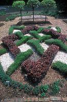 Maze knot garden of germander and barberry with lemon verbena herb standards at rear in herb garden with brick walkways. Dwarf hyssop, germander, barberry, teucrium, Lavandula angustifolia 'Jean Davis', licorice with lemon verbena standards at rear