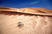 Garnet Sand Dunes at Swakopmund, Namibia
