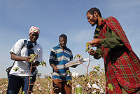 TANZANIA Meatu, organic cotton project biore of swiss yarn trader Remei AG , farmer and farm advisor during cotton harvest