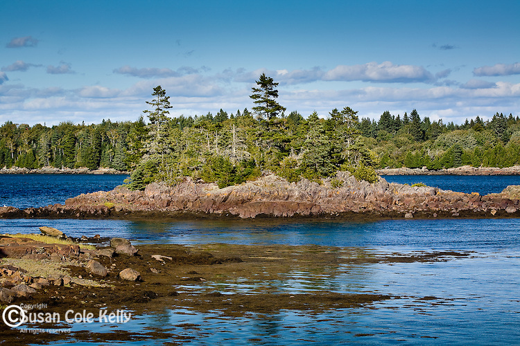 Cobscook Bay State Park, Downeast ME, USA