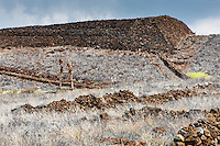 Pu'ukohola Heiau, a national historic site on the Big Island.