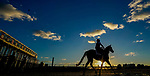 January 20, 2021: A horse heads to the track at sunrise as horses prepare for the 2021 Pegasus World Cup Invitational at Gulfstream Park in Hallandale Beach, Florida. Scott Serio/Eclipse Sportswire/CSM