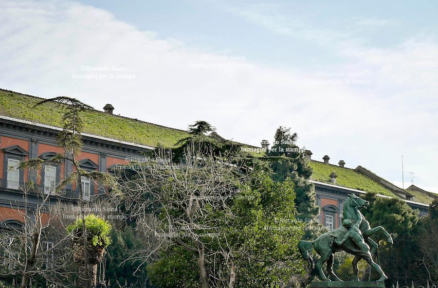 - NAPOLI 7 MAR  2014 -    erba sul tetto di palazzo reale