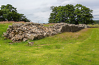 Cumbria, England, UK.  Eastern Wall of the Birdoswald Fort, Hadrian's Wall Footpath.