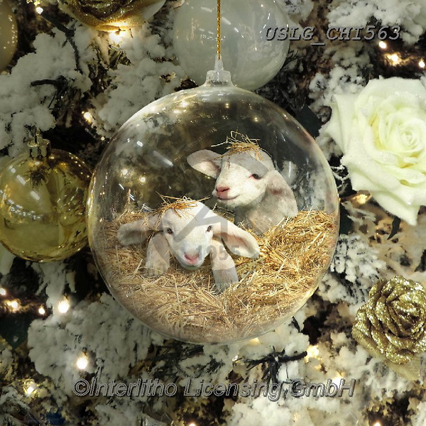 CHIARA,CHRISTMAS ANIMALS, WEIHNACHTEN TIERE, NAVIDAD ANIMALES, paintings+++++,USLGCHI563,#XA# ,funny ,funny