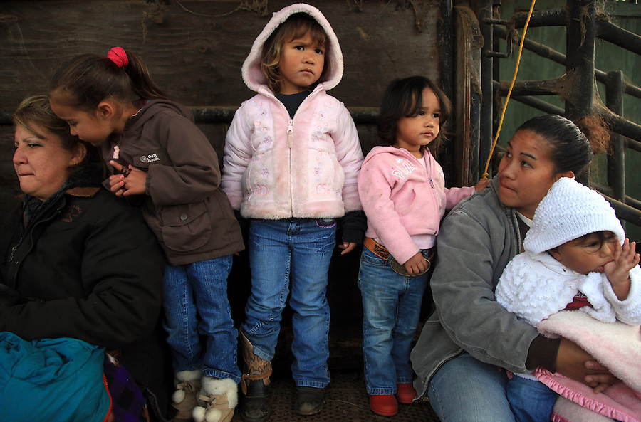 "Children, grandchildren, wives and girlfriends all show up to support the cowboys at brandings.  If they aren't in the coral holding down a calf or performing some other task, they're appreciative observers as Johnelle ""Amoo"" Ching, Shaelyn Freitas (4), Megan Ho'opai (3), Leilillian Solomon-Ho'pai (2), Jamie Ho'opai and Kena Solomon-Ho'pai (11 months) are at a Kahua Ranch Branding in North Kohala, Hawaii, supporting their dad, uncles and grandfather in spirit by wearing cowboy boots and belts."