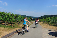 E-Bike-Touren am fränkischen Rotweinwanderweg in den Winbergen von Bürgstadt, Bayern, Deutschland