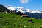CHE, SCHWEIZ, Kanton Bern, Berner Oberland, Wandergebiet Axalp oberhalb des Brienzersees: Almhuetten und Almwiesen vor schneebedeckten Gipfeln der Berner Alpen mit Faulhorn ( 2.681 m) | CHE, Switzerland, Bern Canton, Bernese Oberland, hiking region Axalp above Lake Brienz: alpine pastures and huts with snow covered Faulhorn mountain (8.796 ft.)