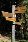 DEU, Deutschland, Bayern, Niederbayern, Naturpark Bayerischer Wald, Wegweiser | DEU, Germany, Bavaria, Lower-Bavaria, Nature Park Bavarian Forest, sign post