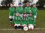 Termonfeckin Green V Donacarney Colts U-9
