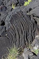 Lava bei Cabrito auf der Insel Pico, Azoren, Portugal