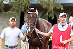 23 October 2009 The Pin Oak Valley View 2nd  Division (GRIII),  Unbridled Essence in the paddock.
