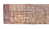 Ancient Egyptian Book of the Dead papyrus - Ptolemaic Period (722-30BC).Turin Egyptian Museum. White background