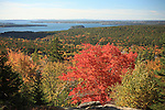 Fall view from Day Mountain, Acadia National Park, Maine, USA