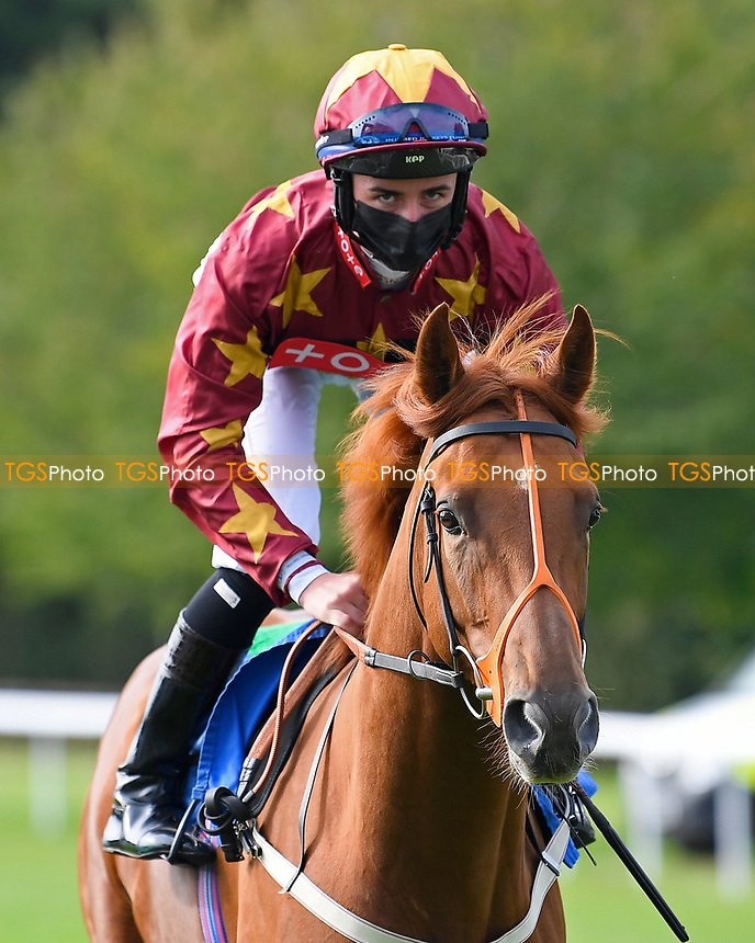 Riktar ridden by Rossa Ryan goes down to the start of The Radcliffe & Co Novice Median Auction Stakes (Div 2) during Horse Racing at Salisbury Racecourse on 11th September 2020