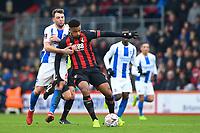 AFC Bournemouth vs Brighton & Hove Albion 05-01-19