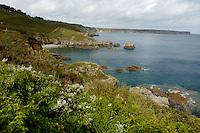 Rugged coastline near the Cap Frehel peninsula, Brittany, France.