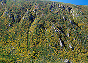 Looking into King Ravine from Chemin Des Dames Trail in the Presidential Range of the New Hampshire White Mountains during the autumn season. Snow can be found in the ice caves of this ravine during the summer months.