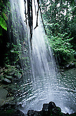 DOMINICA: the Emerald Pool, in the Central Rainforest Reserve, is a tourist attraction visited by cruise ship day trippers.